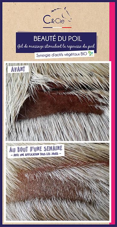 Soin naturel pour chevaux stimulant la repousse du poil_sans additif
