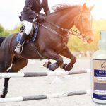 soins naturels pour chevaux sans additif : préparateur musculaire chauffant aux huiles essentielles