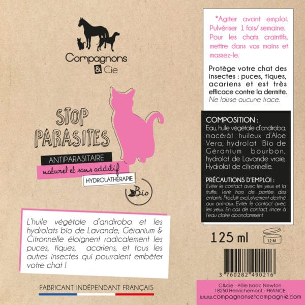 Chatons Chats_Stop Parasite_anti puce