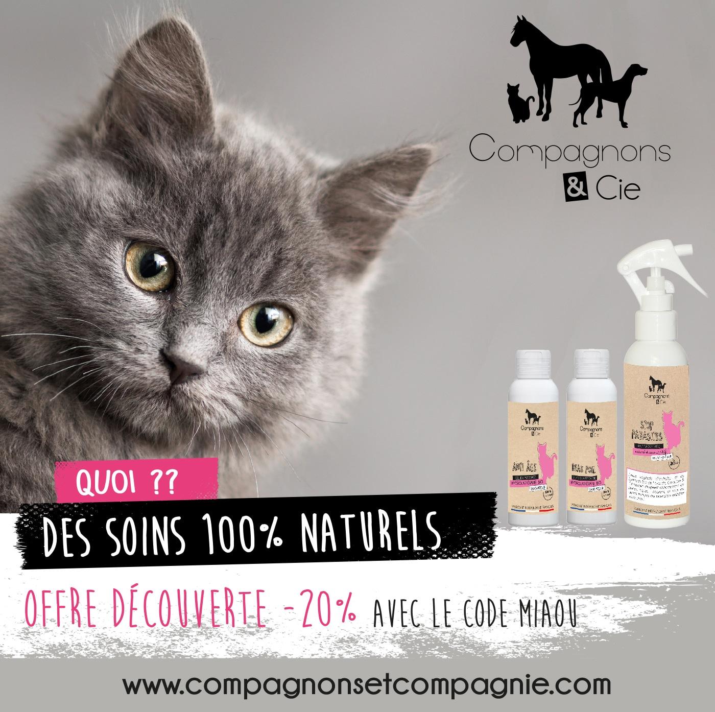 Compagnonsetcompagnie.com site de vente en ligne de soins bio et naturels pour chats fabricant hyrolathérapie pour chat french tech made in france antiparasitaire chat naturel bio