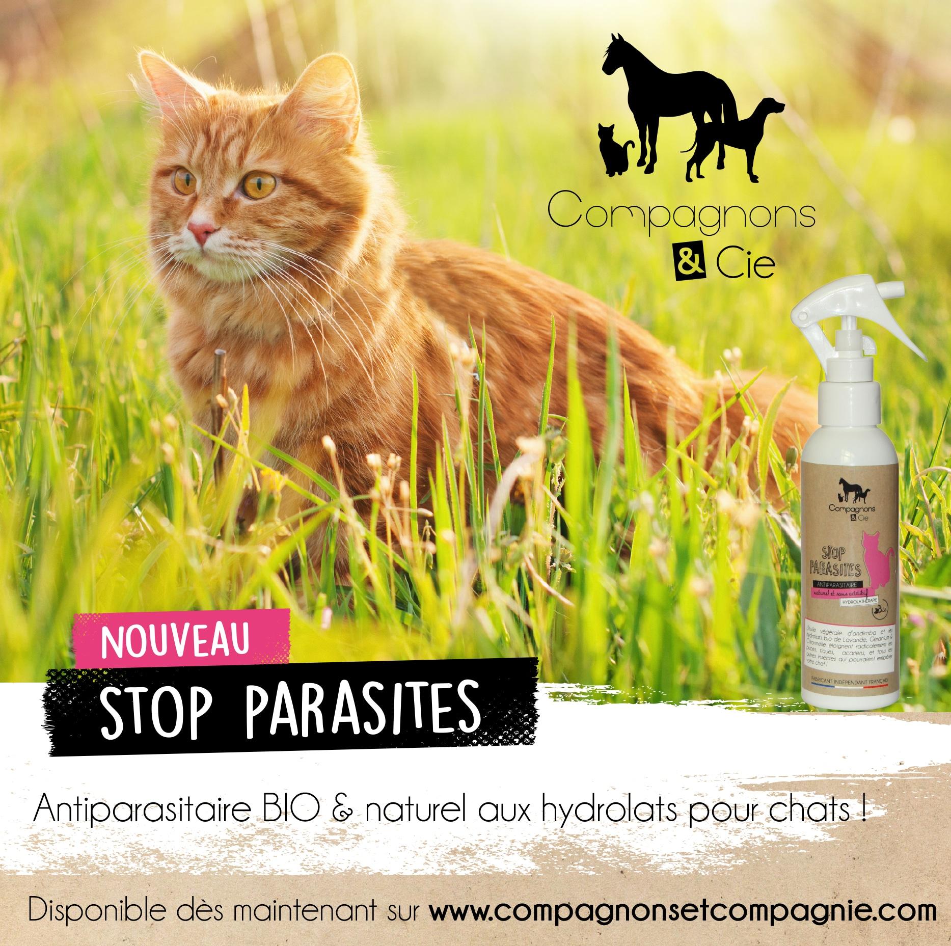 Compagnonscie_CHAT_stop-parasites_antiparasitaire-bio-naturel-pour-chats_soins-naturels-fabrication-francaise-pour-chat_sans-additif_-aux-hydrolats-bio soigner naturellement son chat