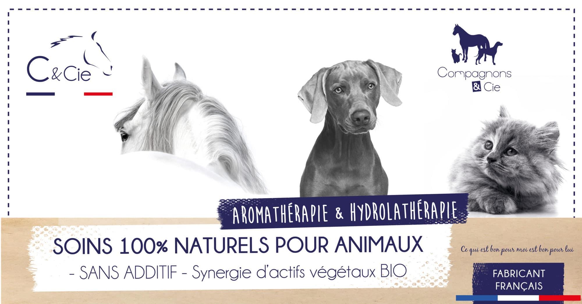 produit soin naturel chien chat aromatherapie sans additif