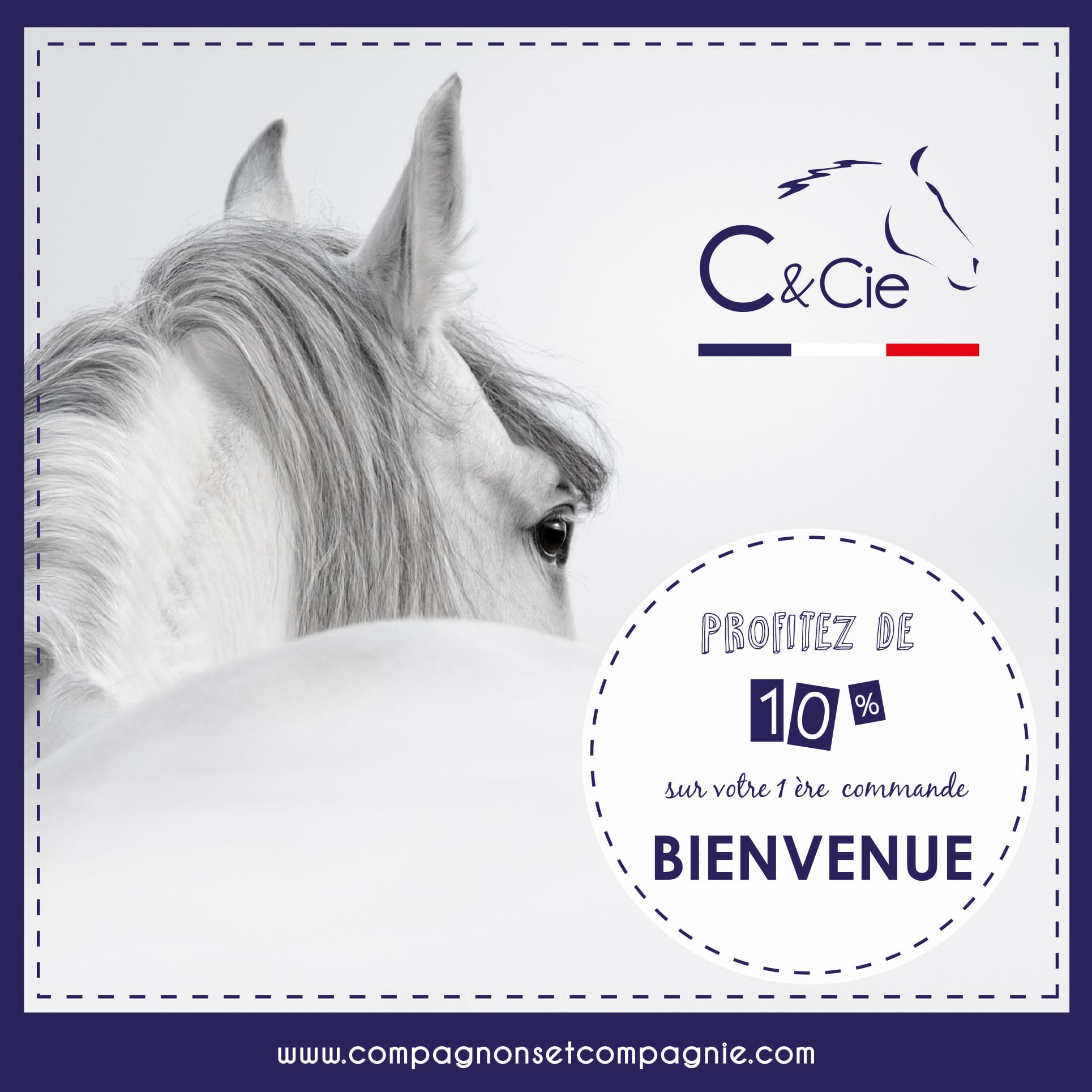 Soin naturel pour cheval - Aromatherapie Equine