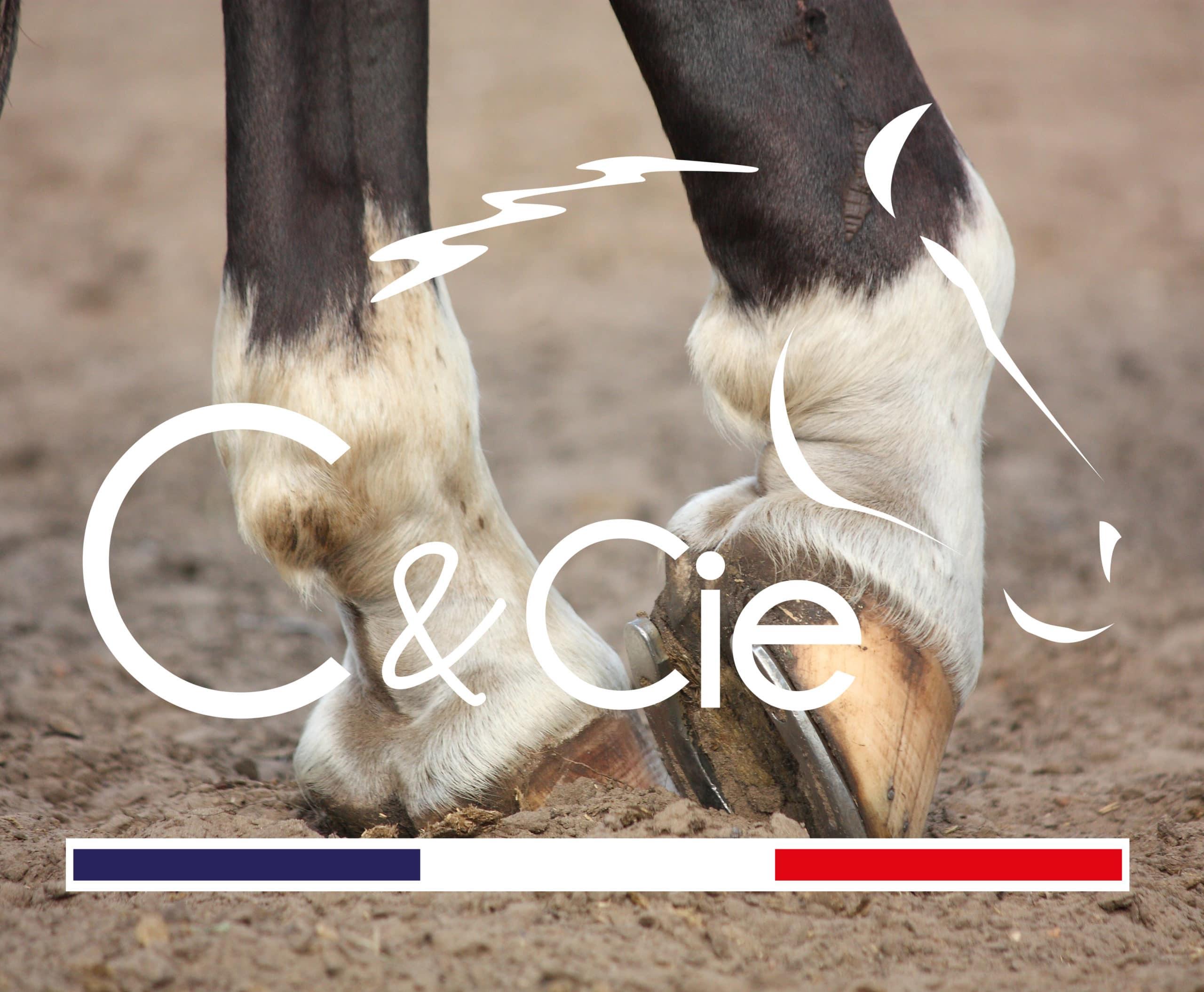 définition engorgement cheval produit engorgement