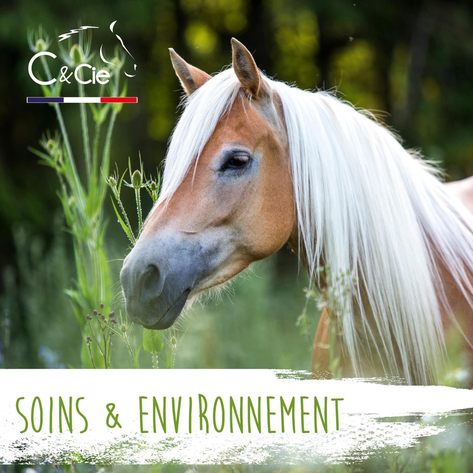 Répulsif anti mouche cheval naturel biodégradable sans risque humain huiles essentielles bio