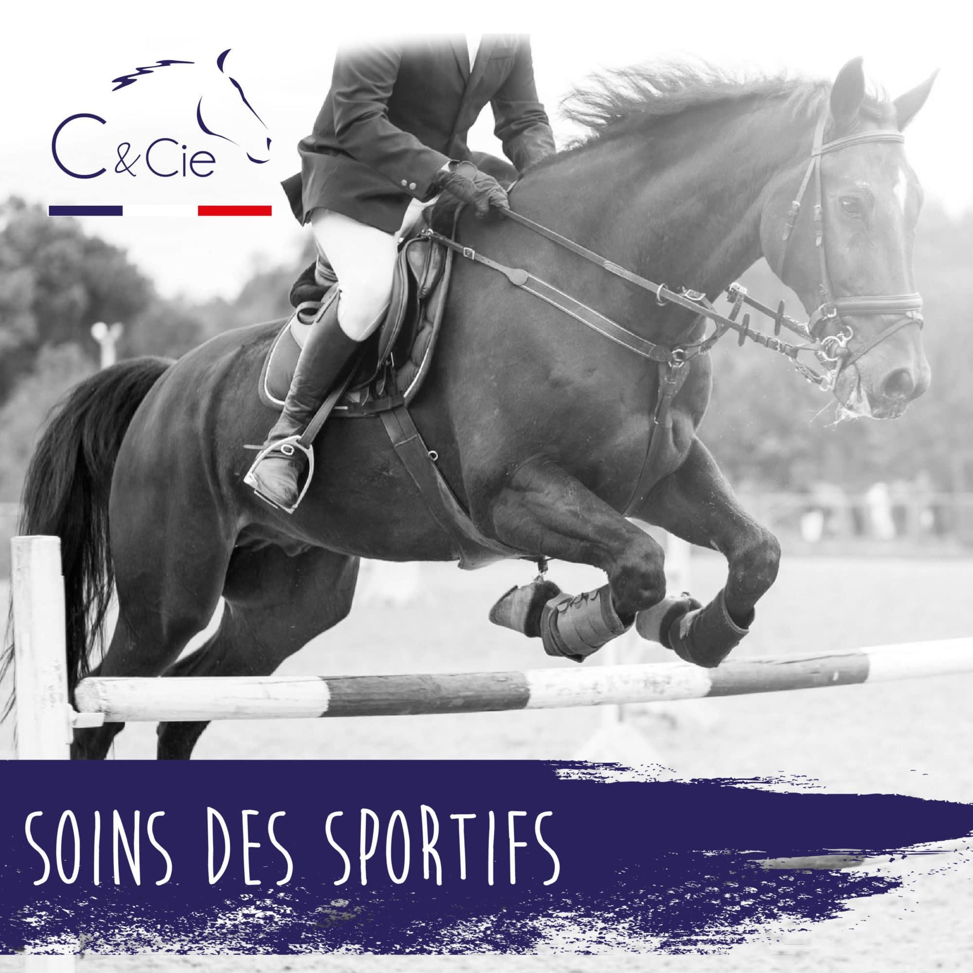 soins naturels chevaux de sport - cheval sportif non dopant
