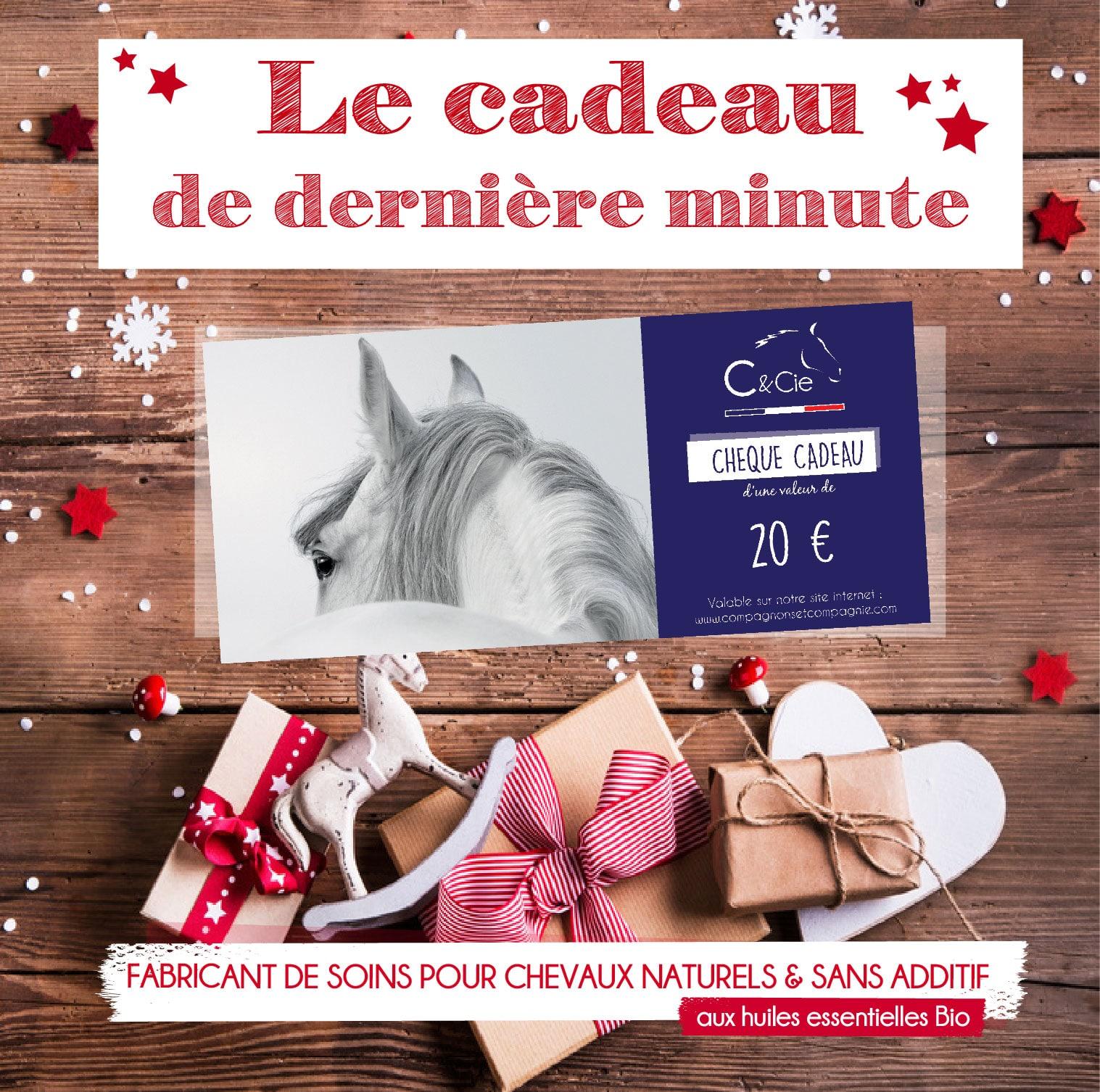 Idée cadeau cheval cavalier cavalier produit naturels pour chevaux