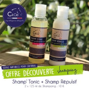 Shampoing naturel chevaux shampoing répulsif insectes
